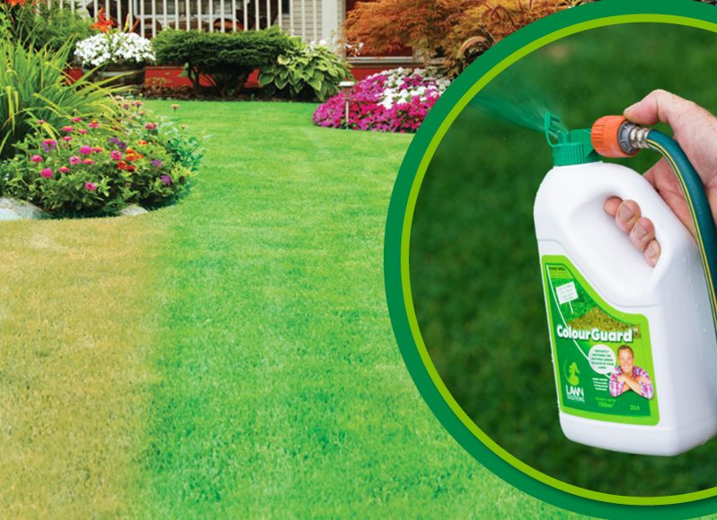 Instantly Green Your Lawn
