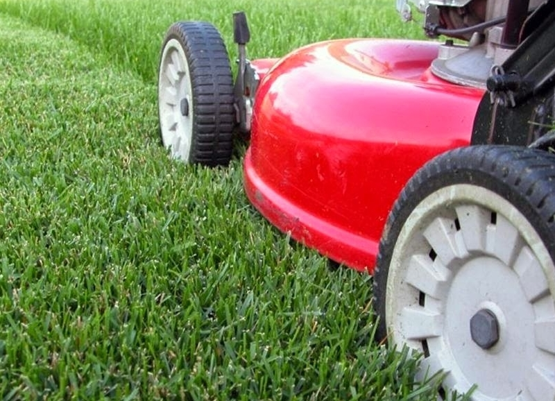 Mowing Height in Winter