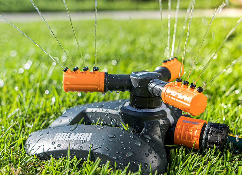 How long can my lawn survive without water?